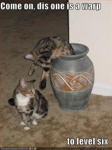 funny-pictures-cats-warp-vase-smb2