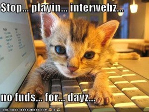 funny-pictures-kitten-laptop-hungry