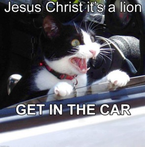 jesus_christ_its_a_lion
