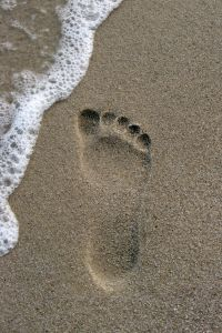 Compare footprints the sand in Jewelry at SHOP.COM